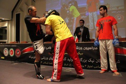 wkn-kickboxing-iran-14-600x400